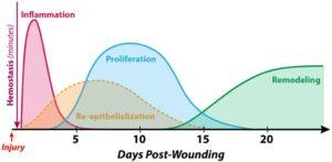 healing-process-design