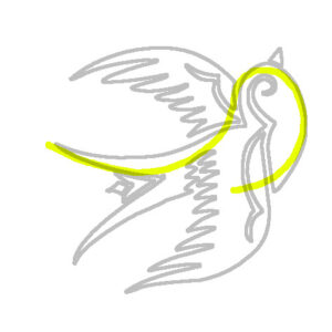 swallow drawn with a loose s